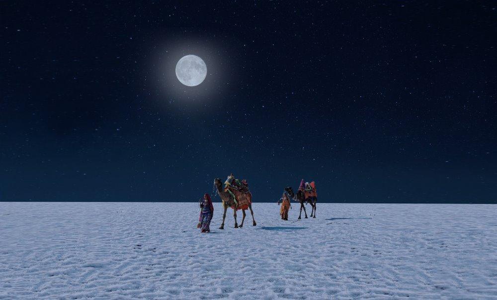 Full Moon Night - Silver Glory